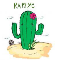 Женщине запихали кактус в попу